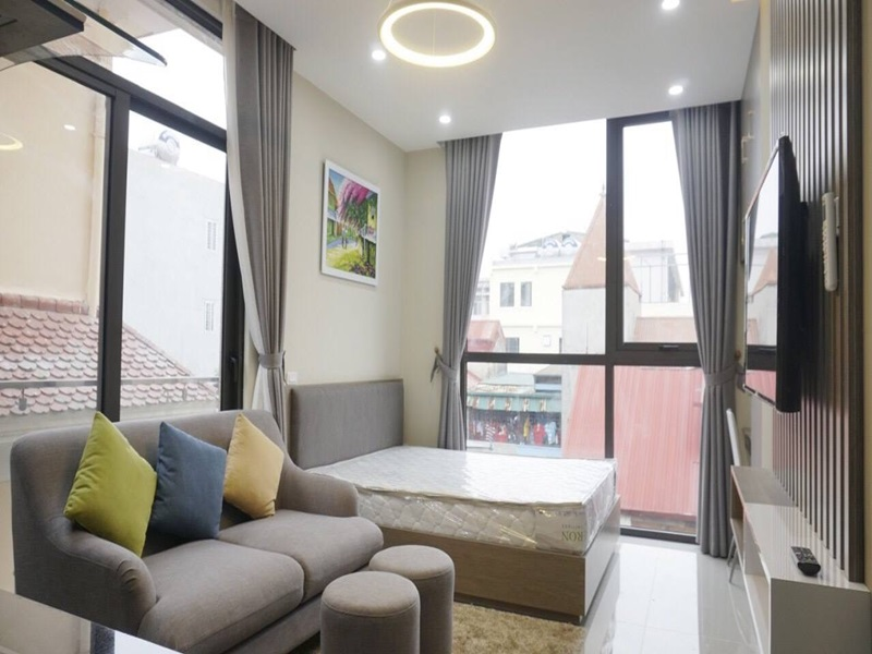 Nice studio for rent with 01 bedroom in Le Thanh Nghi, Hai Ba Trung district
